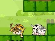 Tiger Eats Cow